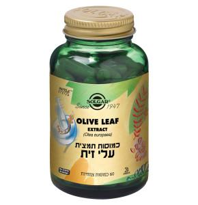 תמצית עלי זית 60 כמוסות SOLGAR Olive Leaf סולגאר