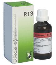 "R13 DR. reckeweg ד""ר רקווג טיפות"