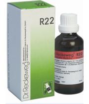 Dr. Reckeweg דוקטור רקווג טיפות R22