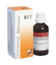 """ד""""ר רקווג DR. RECKEWEG R11 לטיפול בכאבי שלד ופרקים R11 Backache Formula"""