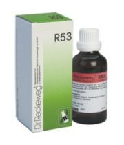 """R53 ד""""ר רקווג טיפות הומאופתיה למקרים של אקנה ופצעי בגרות R53 DR. RECKEWEG"""