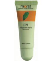 פוליגונום משחה לשפתיים יבשות MORAZ Lips Polygonum Dry Lip Ointment מורז