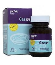 זים GAZ אלטמן