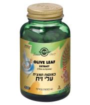 תמצית עלי זית סולגאר | 60 כמוסות | SOLGAR Olive Leaf