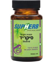 סיקריד 60 כמוסות תמצית ג'ינג'ר בתוספת ויטמין B6 Sickrid סופהרב